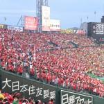 甲子園球場のカープファン