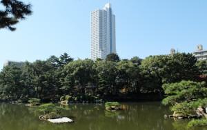 縮景園と高層マンション